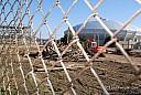 zippip2010012.jpg: 800x536, 668k (February 07, 2010, at 09:31 PM)